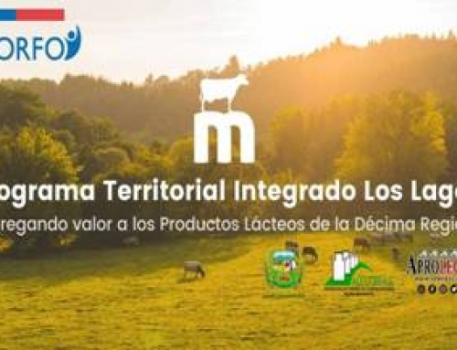 Programa Territorial Integrado Lechero